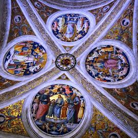 Vaticano by Lidia Noemi - Buildings & Architecture Places of Worship ( santos, oro, vaticano, pinturas, techos, Architecture, Ceilings, Ceiling, Buildings, Building )