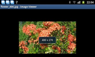 Screenshot of Image Viewer