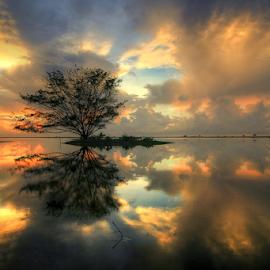 Serangan Beach Reflection by Kadek Jaya - Landscapes Waterscapes ( reflection, tree, serene, tranquility, sunrise )