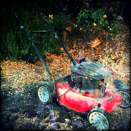 rusted by Leslie Hunziker - Instagram & Mobile iPhone ( lawn mower, yard, rusted )