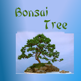 Bonsai Trees App APK Icon