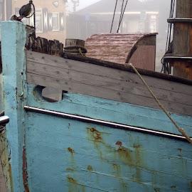A foggy morning in the harbor 6 by Anita Berghoef - Transportation Boats ( port, harbor, blue, fog, transportation, boat )