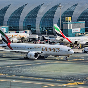Fly Emirates by Jigs Crisostomo - Transportation Airplanes ( #airport, #airlines, #dubai, #emirates )