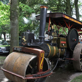 Steam Roller by John Davies - Transportation Other ( age of steam, steam engines, vintage machinery, vintage engines, steam traction engines )
