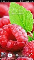 Screenshot of Raspberries Live Wallpaper