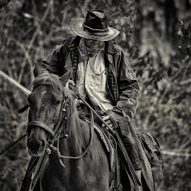 Rider by Dimitar Pavlov - People Portraits of Men ( rider, bulgaria )