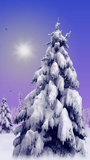 Winter Wonderland LWP