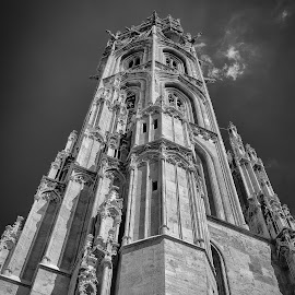 Budapest Steeple by Dale Mellor - Buildings & Architecture Architectural Detail ( budapest, europe, steeple, churches, austria,  )