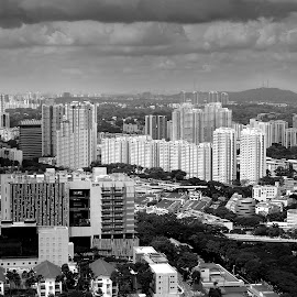 Concrete Jungle-BW by Alan Chew - City,  Street & Park  Skylines ( black and white, b&w, landscape )