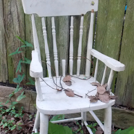 lean on me by Jessica Newland - Artistic Objects Furniture ( chair, nature, still life, outdoor, artistic, Chair, Chairs, Sitting )