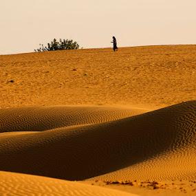 by Sathya Vagale - Landscapes Deserts