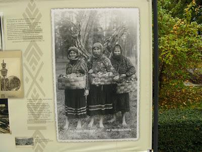 kobiety z grzybami