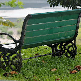 Tranquil rest... by Anoop Namboothiri - Artistic Objects Furniture ( caste iron, grill, bench, park, grass, wooden plank, waterbody, green, lake, ocean, chair, frame, falen leaves, peace, trees, anoop namboothiri, rest, tranquility, river, , vertical lines, pwc, public, furniture, object )