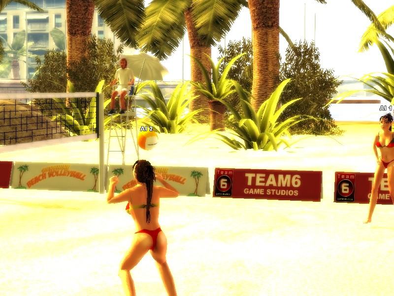 Sunshine Beachvolleyball