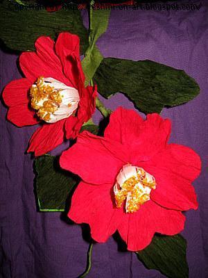 Duplex flowers-Camelia Flowers