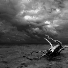 The Forgotten ( Yang terlupakan ) by Aldion Christiawan - Instagram & Mobile Other ( b&w, black and white, landscape )