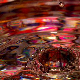 Vivid Splash by Janet Lyle - Abstract Water Drops & Splashes ( water, splash, colors, droplets )