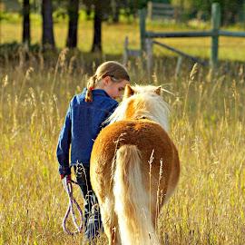 Buddies by Giselle Pierce - Babies & Children Children Candids ( field, miniature horse, child, girl, grass, leading, horse, summer, kid )