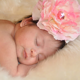 Baby Stella one month old by Donna Cole - Babies & Children Child Portraits ( drcole705@yahoo.com,  )
