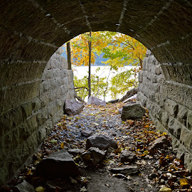 Light at the End of the Tunnel by Amy McGuire - Buildings & Architecture Architectural Detail ( wisconsin, autumn, amy mcguire, culvert, tunnel )
