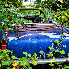 Swallowed by Weeds by Carol Plummer - Transportation Automobiles