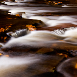 Triangles by Kevin Egan - Nature Up Close Water ( water, color, fall, nature up close, ricketts glen )