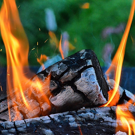 First fire of the summer by Wendy Greenhut - Nature Up Close Other Natural Objects