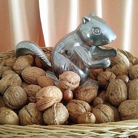 Nuts by Lyz Amer - Food & Drink Fruits & Vegetables ( nuts )