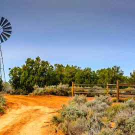 Gooseberry Mesa, UT by Leslie Nu - Landscapes Deserts ( gooseberry mesa, ut, windmill )