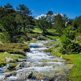 Pingarrón by Eduardo Menendez Mejia - Landscapes Waterscapes ( water, rio, agua, españa, tokina 12-24, madrid, eduardo, menéndez, spain, cotos, arroyo, nikon, d5100, river )