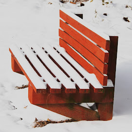 SNOW... by Prasath Panneerselvam - Artistic Objects Furniture