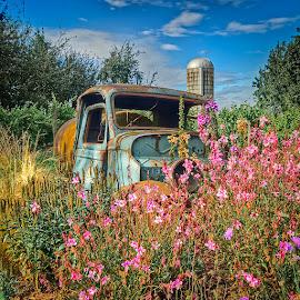 Rusty Water Truck Flower Garden by Bill Camarota - Transportation Other ( recycle, truck, clever, rusty, flowers, garden )