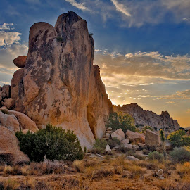 Sunset Hemingway Rocks, Joshua Tree by Patrick Flood - Landscapes Deserts ( canon, clouds, photosbyflood, national park, desert, sunset, joshua tree, back light, hemingway rocks, landscape )