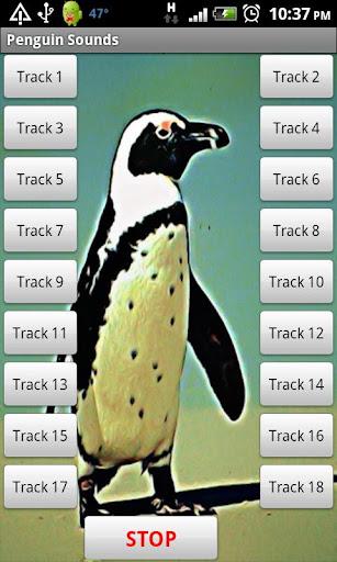 企鵝音效|玩娛樂App免費|玩APPs