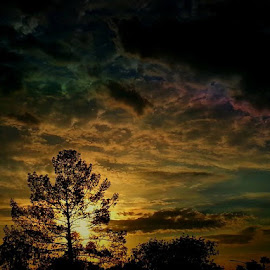 July sunset in AZ  by Deb Bulger - Nature Up Close Trees & Bushes ( clouds, nature, colorful, sunset, weather, trees )