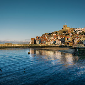 Sleepy Seaside by Darrell Evans - Landscapes Waterscapes ( houses, harbor, church, yorkshire, sea, whitby, ocean, seaside, homes, birds, dock,  )