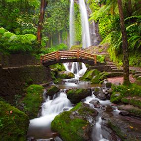 Jumog by Fathya Zainuri - Nature Up Close Water ( water, fresh, green, waterfall )