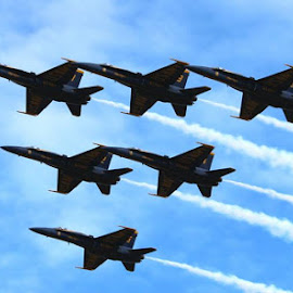 Fly Over by Jesse Davis - News & Events Entertainment ( flight, wild, show, navy, angels, fast, jet,  )