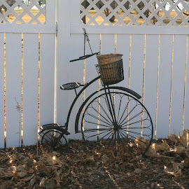 Bygone Days by Samuel Sloan - Transportation Bicycles ( bycicle, antique bicycle )