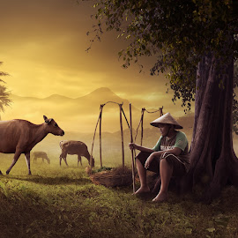 Ngangon by Hendra YM - Digital Art People ( digitalart, farm, farmer, fine art, cow, manipulation )
