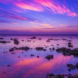 Lady Elliot Island Sunset by Colin Davis - Landscapes Sunsets & Sunrises ( big lee stopper, purple, sunset, long exposure )
