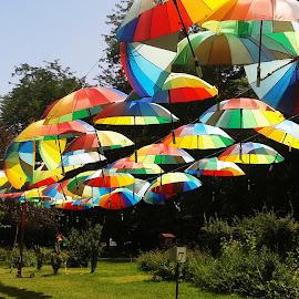 colorfull by Barzaun Bazbaz - City,  Street & Park  City Parks