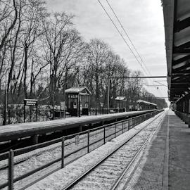 Track Two by Gary Ambessi - Transportation Railway Tracks