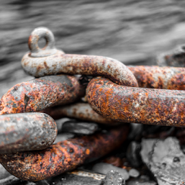 Chain Link by Darren Legg - Artistic Objects Industrial Objects ( water, sea side, chains, sea, cornwall, boscastle )