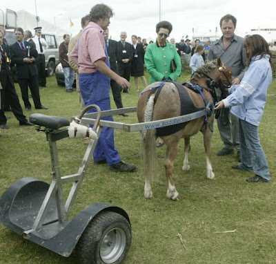 HRH Princess Anne studying and early Saddlechariot at the Royal Cornwall Show