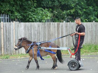 Learner driver in Balsall Heath