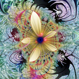 Fractal Flower by Simon Eastop - Abstract Patterns ( abstract, fractal, digital, flower )