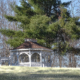 Snow snow go away ! by Linda Blevins - News & Events Weather & Storms ( sky, snow, trees, gazebo, , winter, cold )