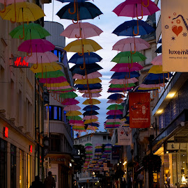 Umbrellas of Luxembourg by Onur Genes - City,  Street & Park  Street Scenes ( street, umbrella, luxembourg )