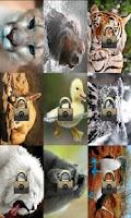 Screenshot of Jigsaw Animals Planet 2